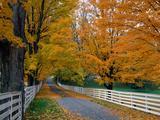Wallpaperi Th_14831_Scenic_Backroad9_New_Hampshire_122_584lo